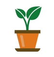 green organic plant vector image vector image
