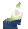 Wolf Howling in the Night Forest2 vector image