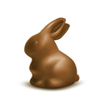 Easter chocolate bunny vector image vector image