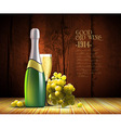 wine and grapevine vector image