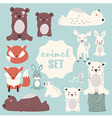 Collection of cute forest and polar animals vector image