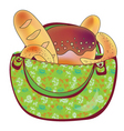 bag bread vector image vector image