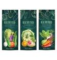Healthy vegetables sketch banners on blackboard vector image vector image