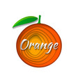 paper art orange vector image