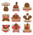 boxing club or boxer school championship vector image