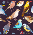 seamless patterns with birds vector image