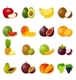 Icon Set Fruits vector image