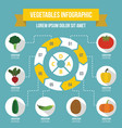 vegetables infographic concept flat style vector image