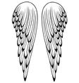 Wings angel vector image