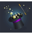Magic hat on black vector image