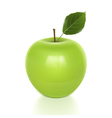 Green Apple with Leaf vector image