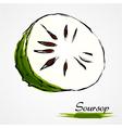 Soursop guanabana vector image