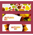 Fresh natural fall horizontal banners vector image vector image