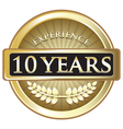 Ten Years Experience Gold vector image