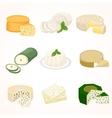 Cheese varieties vector image