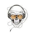 skull listening a music in headphones vector image