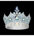 decorative crown of silver vector image