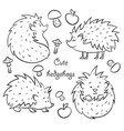 four cute hedgehogs vector image