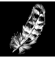 Hand-drawn feather ink handpicked vector image