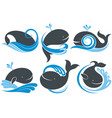 whales with splash of water vector image