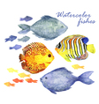 Watercolor fishes set vector image