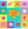 fresh flower heads colorful collection vector image