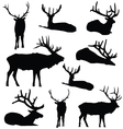 Elk Silhouette Deer Animal Digital Clip Art vector image