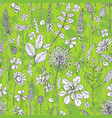 seamless pattern with wildflowers on green vector image