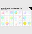 set of fresh linear web gradients vector image