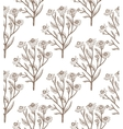 hand drawn chamomile background vector image vector image