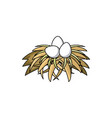 three eggs in chicken bird nest made of straw vector image