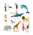 flat icons set of dolphinarium circus and