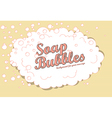 soap bubbles background vector image vector image