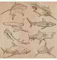 Sharks - An hand drawn pack vector image