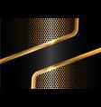 abstract black gold line circle mesh vector image