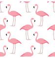flamingo seamless pattern vector image