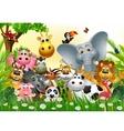 Funny animal cartoon vector image