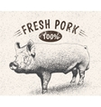 Vintage label with pig vector image