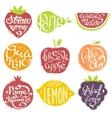 Names OF Fruits In Fruit Shaped Frame Set vector image