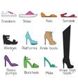 Shoes models for women icons set design vector image