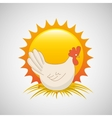 chicke and sun icon vector image