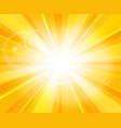 sun beams pattern vector image vector image