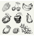 Set of fruits Freehand drawing vector image