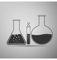 Laboratory glassware icon vector image