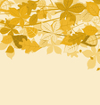 autumnal leaves vector image