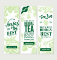 sketch healthy tea vertical banners vector image vector image