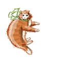 Cute orange cat sketch for your design vector image vector image
