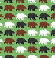 Bears seamless pattern background of wild Grizzly vector image