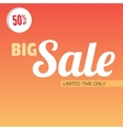 Big sale bright banner vector image