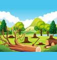 forest scene with stump trees vector image